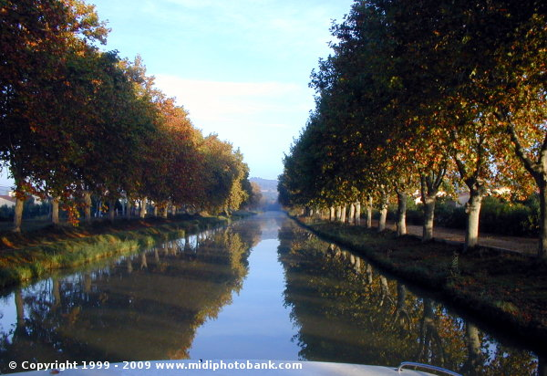 The Midi Canal at Argens-Minervois