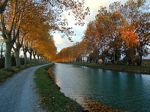 Late Autumn Afternoon ― at the La Cascade restaurant on the Midi Canal